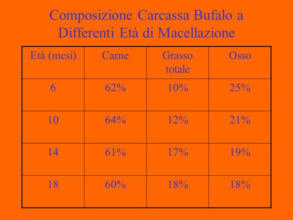 Composizione Carcassa Bufalo a Differenti Età di Macellazione Età (mesi)CarneGrasso totale Osso 662%10%25% 1064%12%21% 1461%17%19% 1860%18%