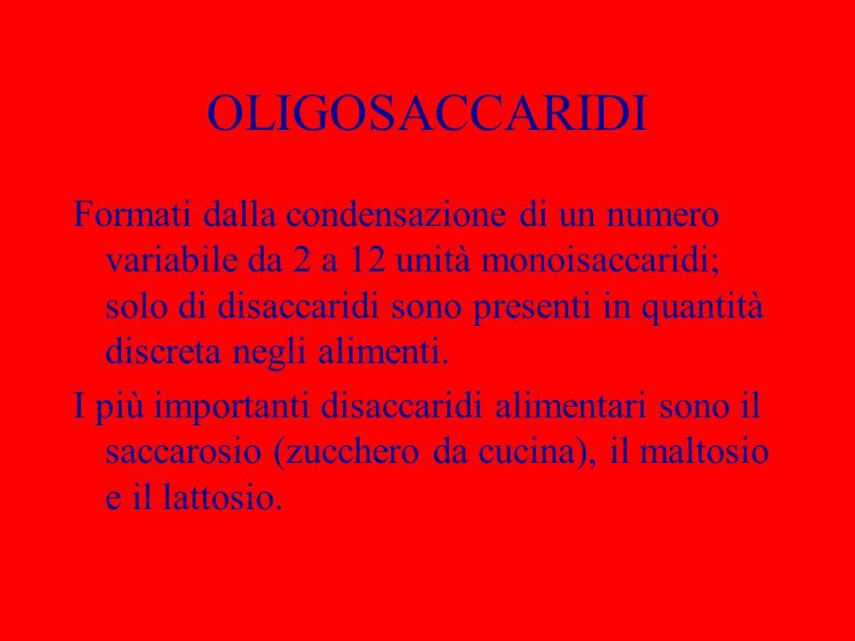 OLIGOSACCARIDI Formati dalla condensazione di un numero variabile da 2 a 12 unità monoisaccaridi; solo di disaccaridi sono presenti in quantità discre