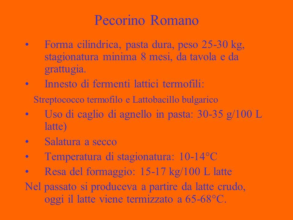 Pecorino Romano Forma cilindrica, pasta dura, peso 25-30 kg, stagionatura minima 8 mesi, da tavola e da grattugia.