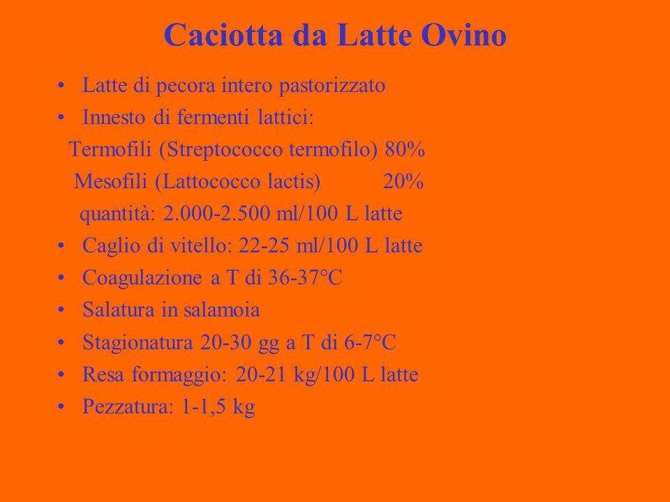 Caciotta da Latte Ovino Latte di pecora intero pastorizzato Innesto di fermenti lattici: Termofili (Streptococco termofilo) 80% Mesofili (Lattococco lactis) 20% quantità: 2.000-2.500 ml/100 L latte Caglio di vitello: 22-25 ml/100 L latte Coagulazione a T di 36-37°C Salatura in salamoia Stagionatura 20-30 gg a T di 6-7°C Resa formaggio: 20-21 kg/100 L latte Pezzatura: 1-1,5 kg