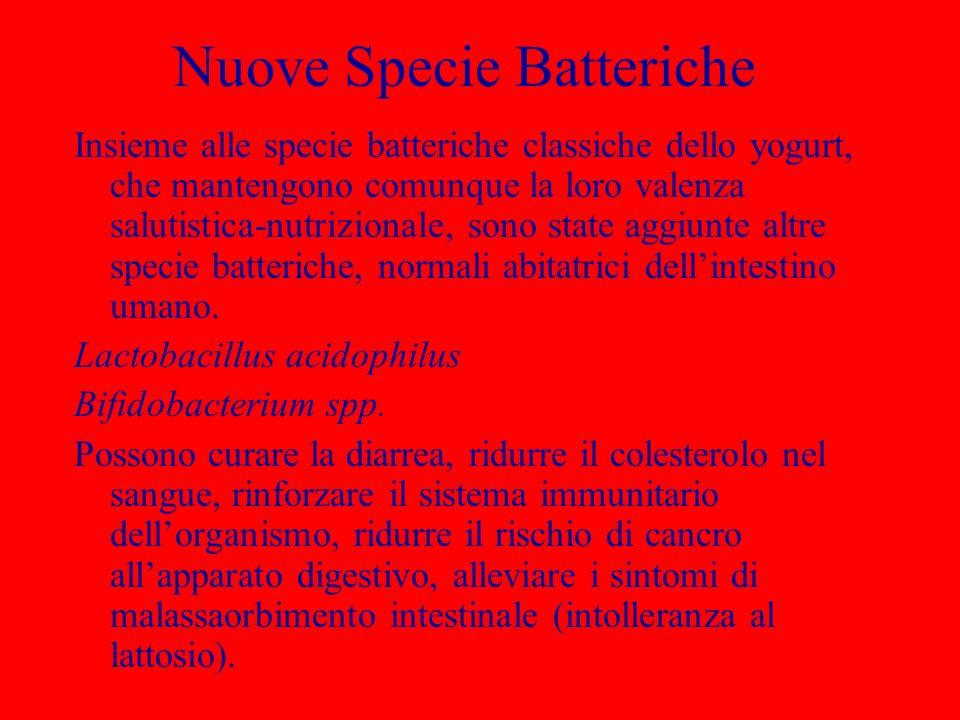 Nuove Specie Batteriche Insieme alle specie batteriche classiche dello yogurt, che mantengono comunque la loro valenza salutistica-nutrizionale, sono