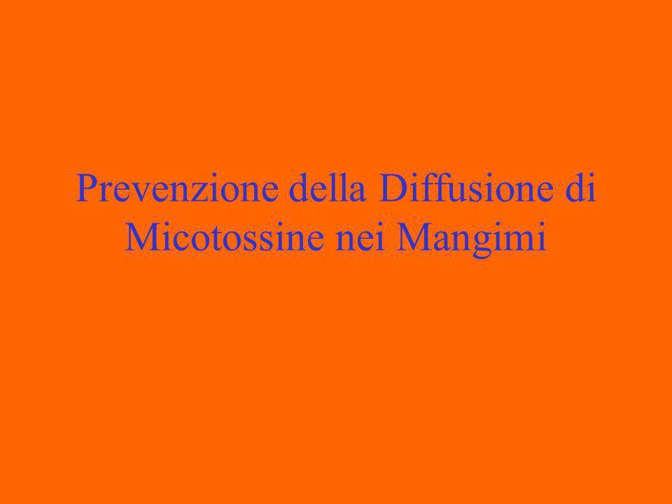 Prevenzione della Diffusione di Micotossine nei Mangimi