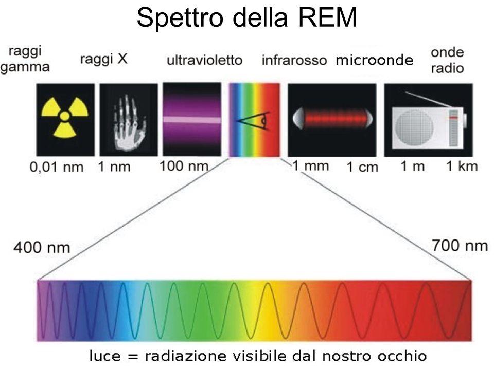 Spettro della REM