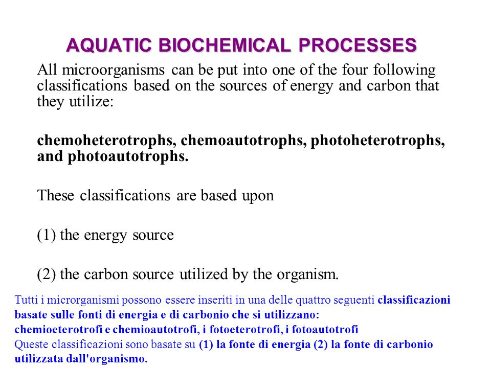 AQUATIC BIOCHEMICAL PROCESSES All microorganisms can be put into one of the four following classifications based on the sources of energy and carbon t