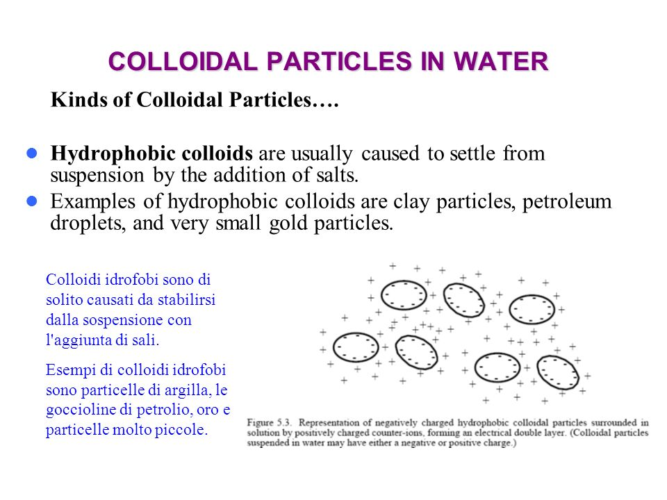 COLLOIDAL PARTICLES IN WATER Kinds of Colloidal Particles…. Hydrophobic colloids are usually caused to settle from suspension by the addition of salts