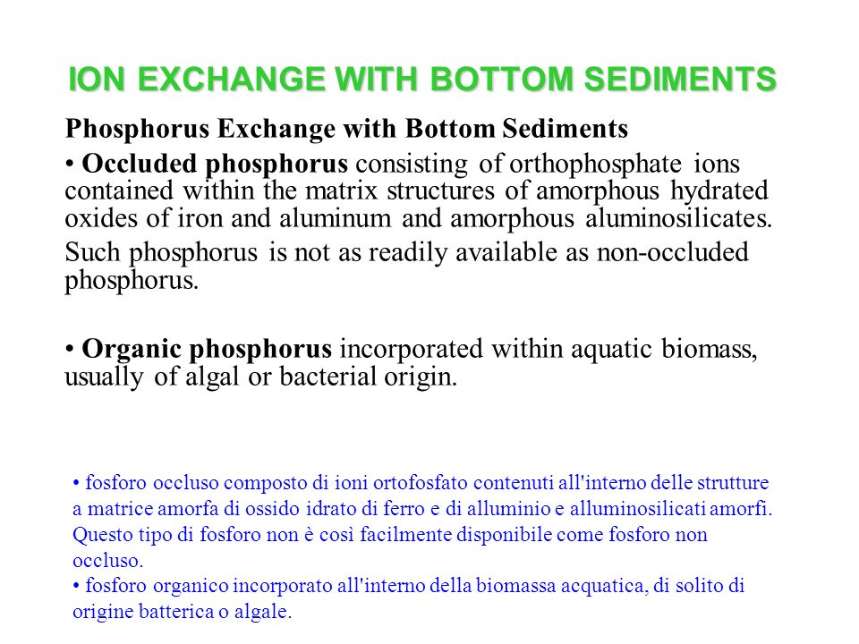 ION EXCHANGE WITH BOTTOM SEDIMENTS Phosphorus Exchange with Bottom Sediments Occluded phosphorus consisting of orthophosphate ions contained within th