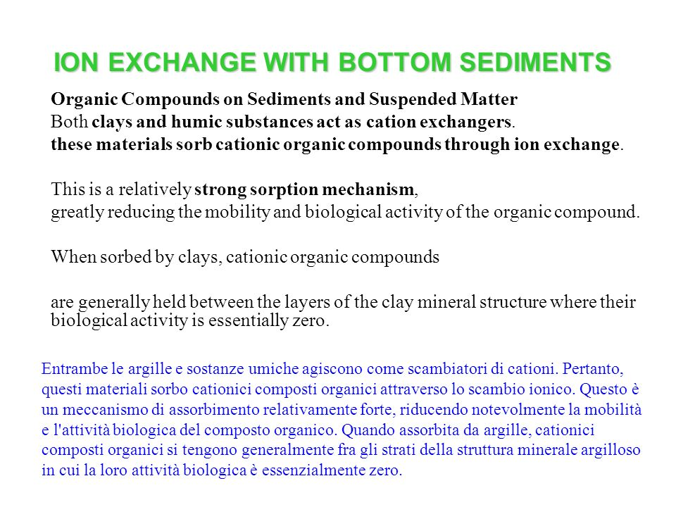 ION EXCHANGE WITH BOTTOM SEDIMENTS Organic Compounds on Sediments and Suspended Matter Both clays and humic substances act as cation exchangers. these