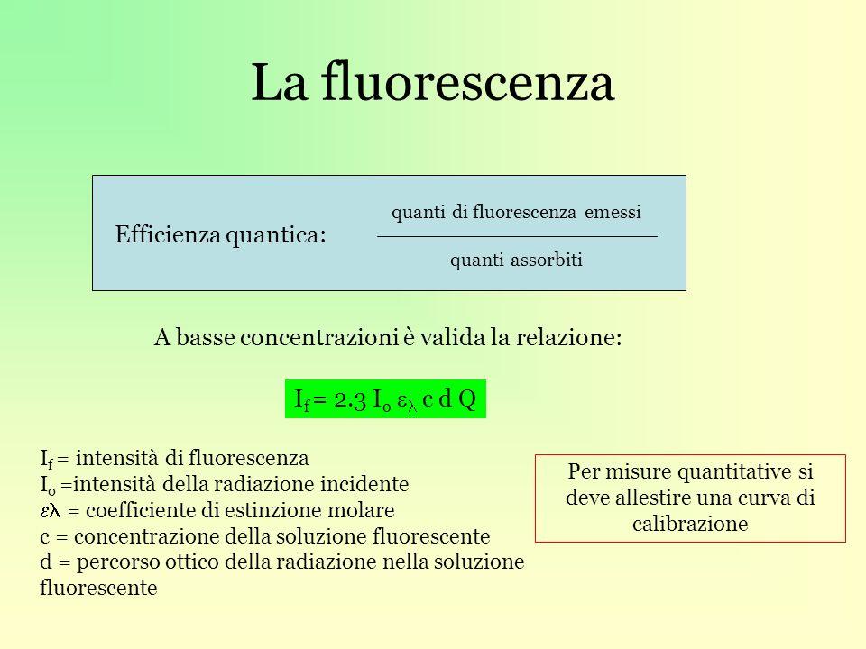 La fluorescenza Efficienza quantica: quanti di fluorescenza emessi quanti assorbiti A basse concentrazioni è valida la relazione: I f = 2.3 I o c d Q I f = intensità di fluorescenza I o =intensità della radiazione incidente = coefficiente di estinzione molare c = concentrazione della soluzione fluorescente d = percorso ottico della radiazione nella soluzione fluorescente Per misure quantitative si deve allestire una curva di calibrazione