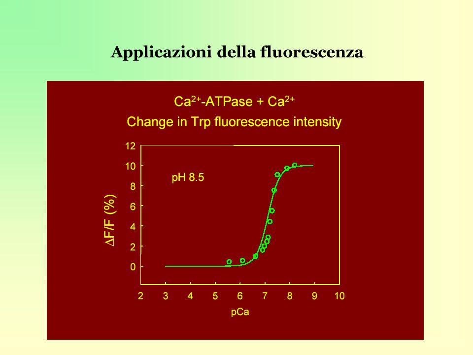 Applicazioni della fluorescenza