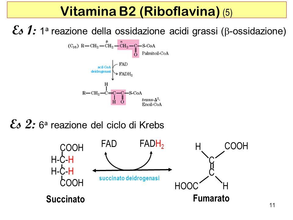 11 Vitamina B2 (Riboflavina) (5) Es 1: 1 a reazione della ossidazione acidi grassi ( -ossidazione) Es 2: 6 a reazione del ciclo di Krebs COOH H-C-H CO
