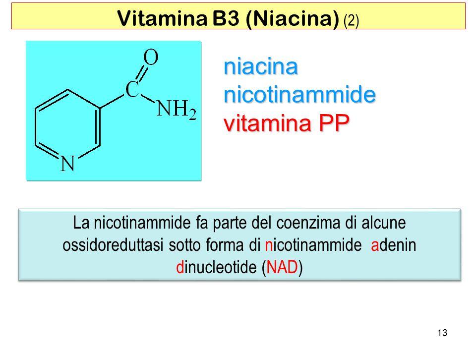 13 niacina nicotinammide vitamina PP Vitamina B3 (Niacina) (2) La nicotinammide fa parte del coenzima di alcune ossidoreduttasi sotto forma di nicotin