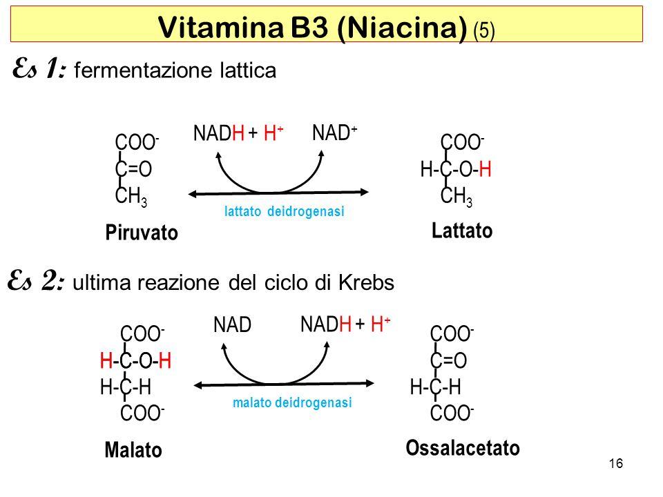 COO - H-C-O-H H-C-H COO - NAD NADH + H + H-C-O-H malato deidrogenasi 16 Vitamina B3 (Niacina) (5) Es 1: fermentazione lattica Es 2: ultima reazione de