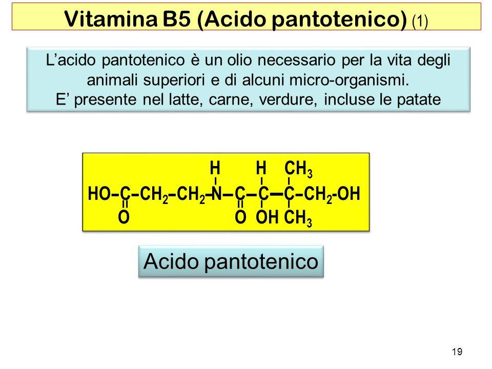 Lacido pantotenico è un olio necessario per la vita degli animali superiori e di alcuni micro-organismi. E presente nel latte, carne, verdure, incluse