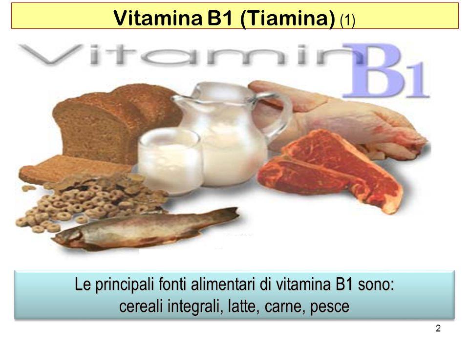 Le principali fonti alimentari di vitamina B1 sono: cereali integrali, latte, carne, pesce Le principali fonti alimentari di vitamina B1 sono: cereali