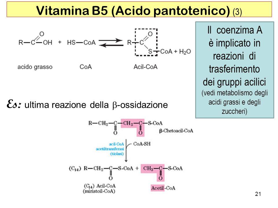 21 Vitamina B5 (Acido pantotenico) (3) Es: ultima reazione della -ossidazione Il coenzima A è implicato in reazioni di trasferimento dei gruppi acilic