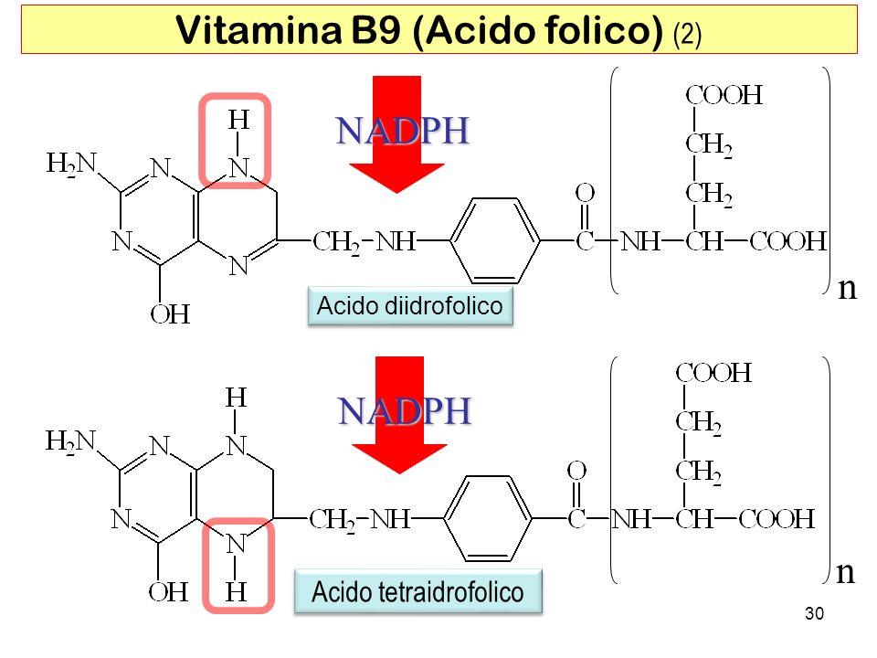 n Acido diidrofolico Acido tetraidrofolico n NADPH 30 Vitamina B9 (Acido folico) (2) NADPH