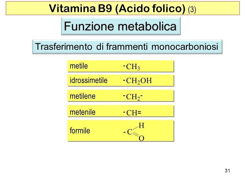 Funzione metabolica Trasferimento di frammenti monocarboniosi 31 Vitamina B9 (Acido folico) (3) - - - - - - = metile idrossimetile metilene metenile f