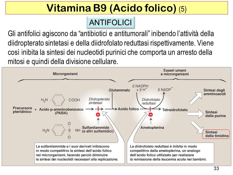 ANTIFOLICIANTIFOLICI Gli antifolici agiscono da antibiotici e antitumorali inibendo lattività della diidropterato sintetasi e della diidrofolato redut