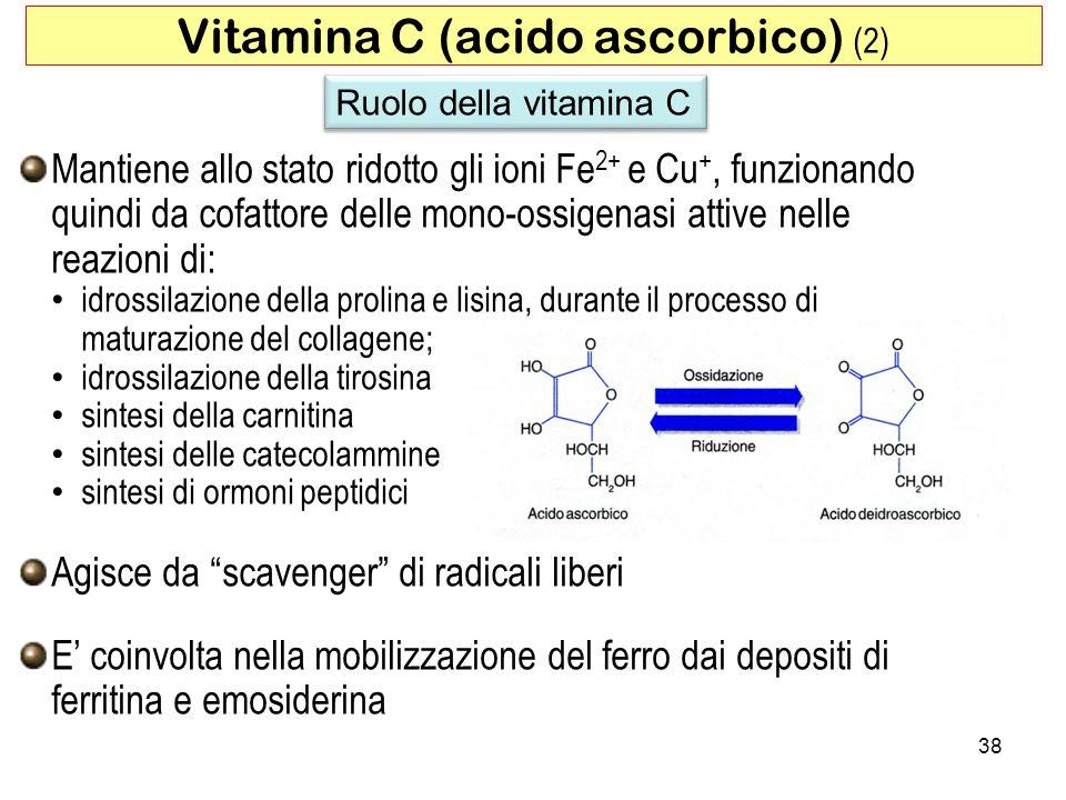 Mantiene allo stato ridotto gli ioni Fe 2+ e Cu +, funzionando quindi da cofattore delle mono-ossigenasi attive nelle reazioni di: idrossilazione dell