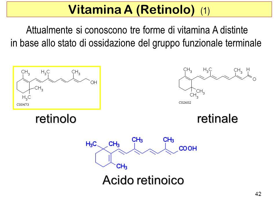 retinolo retinale Acido retinoico 42 Vitamina A (Retinolo) (1) Attualmente si conoscono tre forme di vitamina A distinte in base allo stato di ossidaz