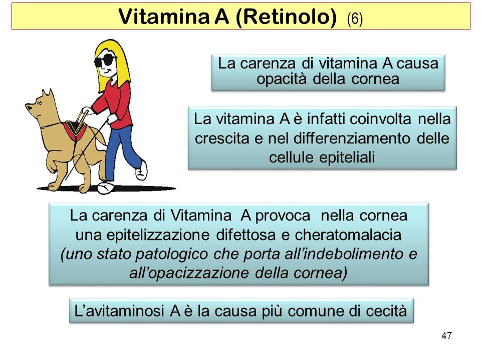 La carenza di vitamina A causa opacità della cornea La carenza di vitamina A causa opacità della cornea La carenza di Vitamina A provoca nella cornea