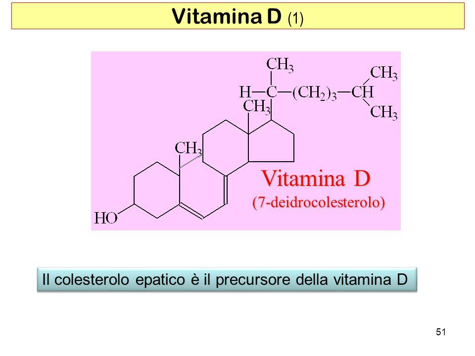 Vitamina D (7-deidrocolesterolo) Il colesterolo epatico è il precursore della vitamina D 51 Vitamina D (1)