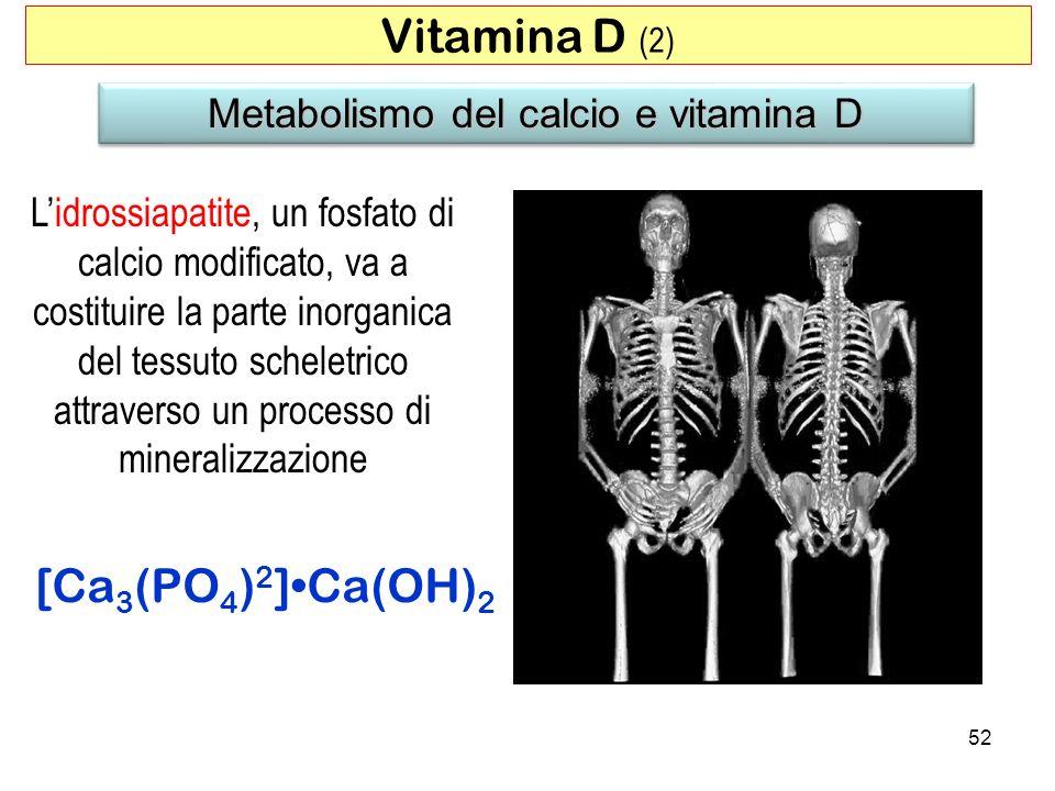 Metabolismo del calcio e vitamina D Lidrossiapatite, un fosfato di calcio modificato, va a costituire la parte inorganica del tessuto scheletrico attr