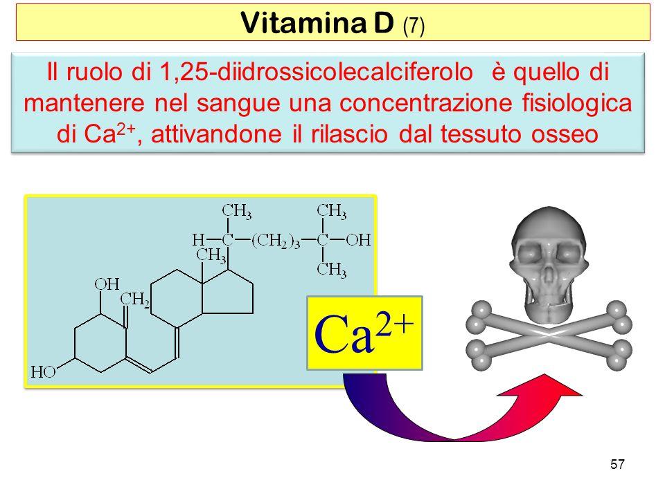 Il ruolo di 1,25-diidrossicolecalciferolo è quello di mantenere nel sangue una concentrazione fisiologica di Ca 2+, attivandone il rilascio dal tessut