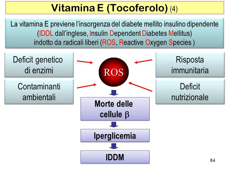 La vitamina E previene linsorgenza del diabete mellito insulino dipendente (IDDL) La vitamina E previene linsorgenza del diabete mellito insulino dipe