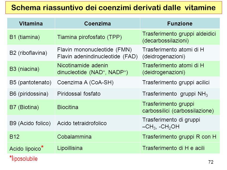 VitaminaCoenzimaFunzione B1 (tiamina)Tiamina pirofosfato (TPP) Trasferimento gruppi aldeidici (decarbossilazioni) B2 (riboflavina) Flavin mononucleoti