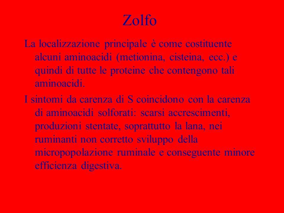 Zolfo La localizzazione principale è come costituente alcuni aminoacidi (metionina, cisteina, ecc.) e quindi di tutte le proteine che contengono tali