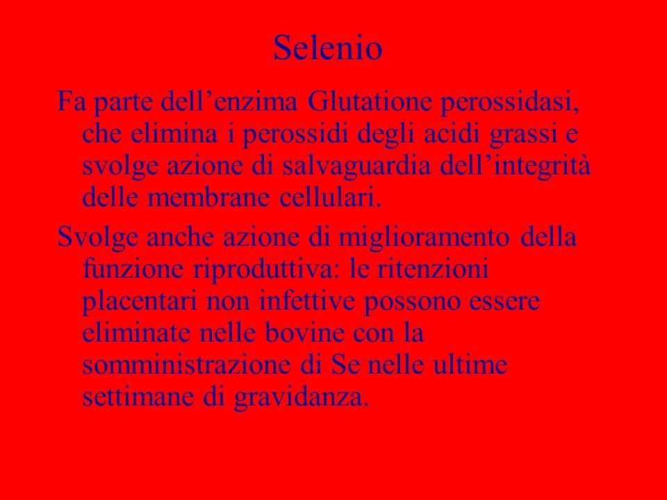 Selenio Fa parte dellenzima Glutatione perossidasi, che elimina i perossidi degli acidi grassi e svolge azione di salvaguardia dellintegrità delle mem
