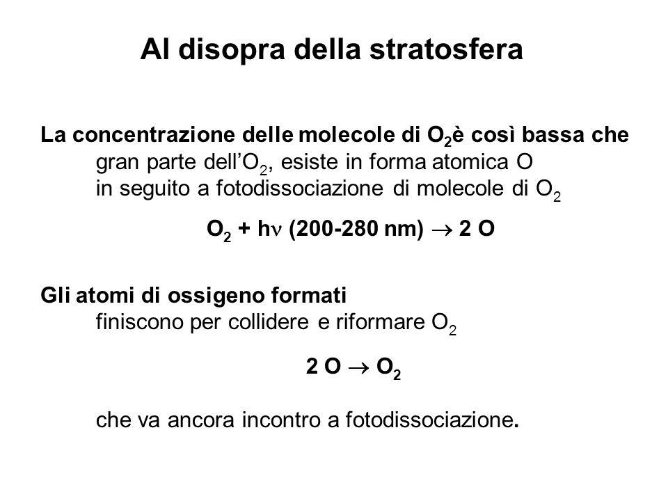 La concentrazione delle molecole di O 2 è così bassa che gran parte dellO 2, esiste in forma atomica O in seguito a fotodissociazione di molecole di O