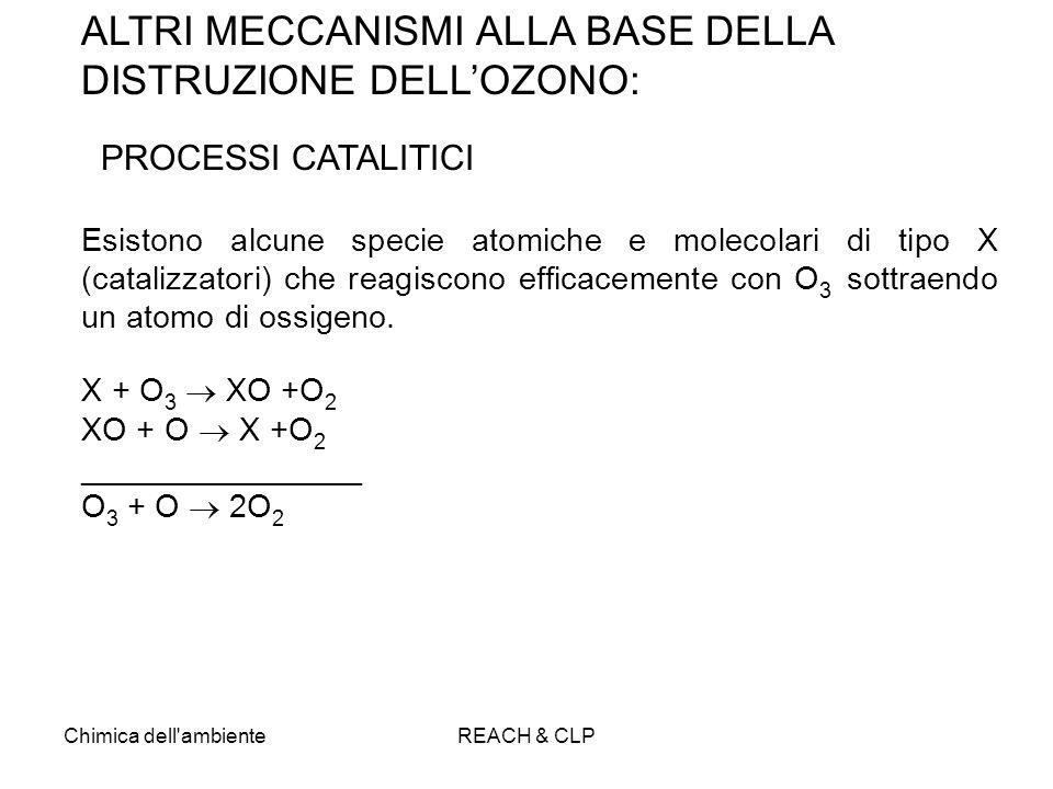 Chimica dell'ambienteREACH & CLP ALTRI MECCANISMI ALLA BASE DELLA DISTRUZIONE DELLOZONO: PROCESSI CATALITICI Esistono alcune specie atomiche e molecol