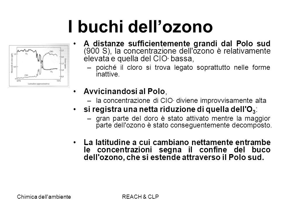 Chimica dell'ambienteREACH & CLP I buchi dellozono A distanze sufficientemente grandi dal Polo sud (900 S), la concentrazione dell'ozono è relativamen
