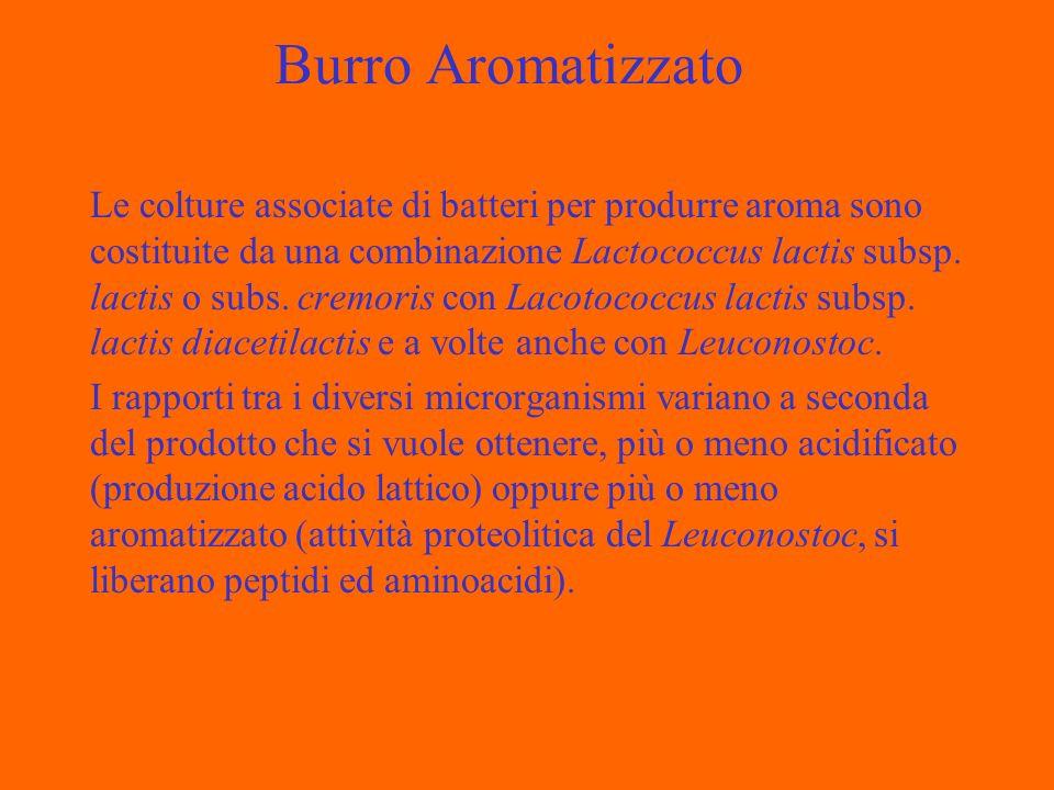 Burro Aromatizzato Le colture associate di batteri per produrre aroma sono costituite da una combinazione Lactococcus lactis subsp.