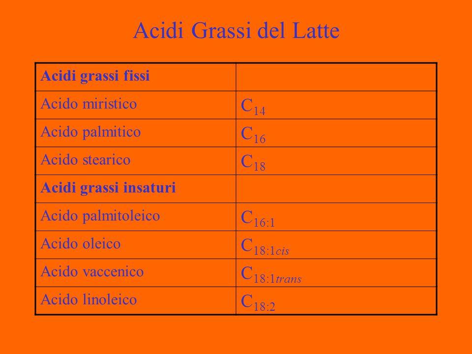 Globuli di Grasso del Latte Il grasso nel alatte si presenta come emulsione sotto forma di globuli di diametro variabile da 0,1 a 10 µm.