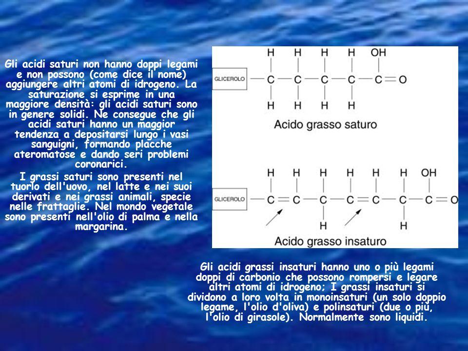 Gli acidi grassi insaturi hanno uno o più legami doppi di carbonio che possono rompersi e legare altri atomi di idrogeno; I grassi insaturi si dividon