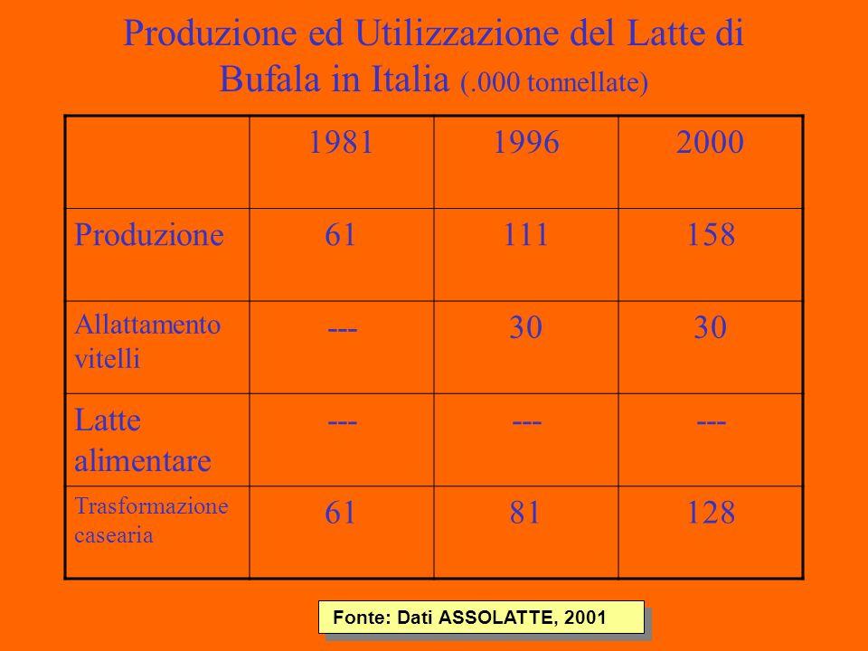 Produzione ed Utilizzazione del Latte di Bufala in Italia (.000 tonnellate) 198119962000 Produzione61111158 Allattamento vitelli ---30 Latte alimentare --- Trasformazione casearia 6181128 Fonte: Dati ASSOLATTE, 2001