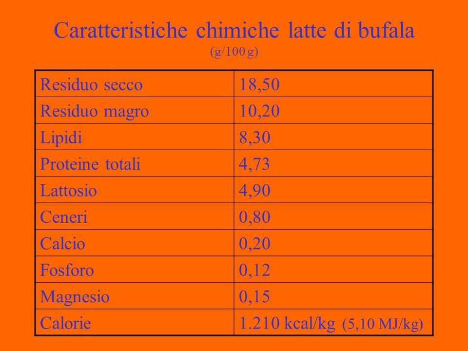 Caratteristiche chimiche latte di bufala (g/100 g) Residuo secco18,50 Residuo magro10,20 Lipidi8,30 Proteine totali4,73 Lattosio4,90 Ceneri0,80 Calcio0,20 Fosforo0,12 Magnesio0,15 Calorie1.210 kcal/kg (5,10 MJ/kg)
