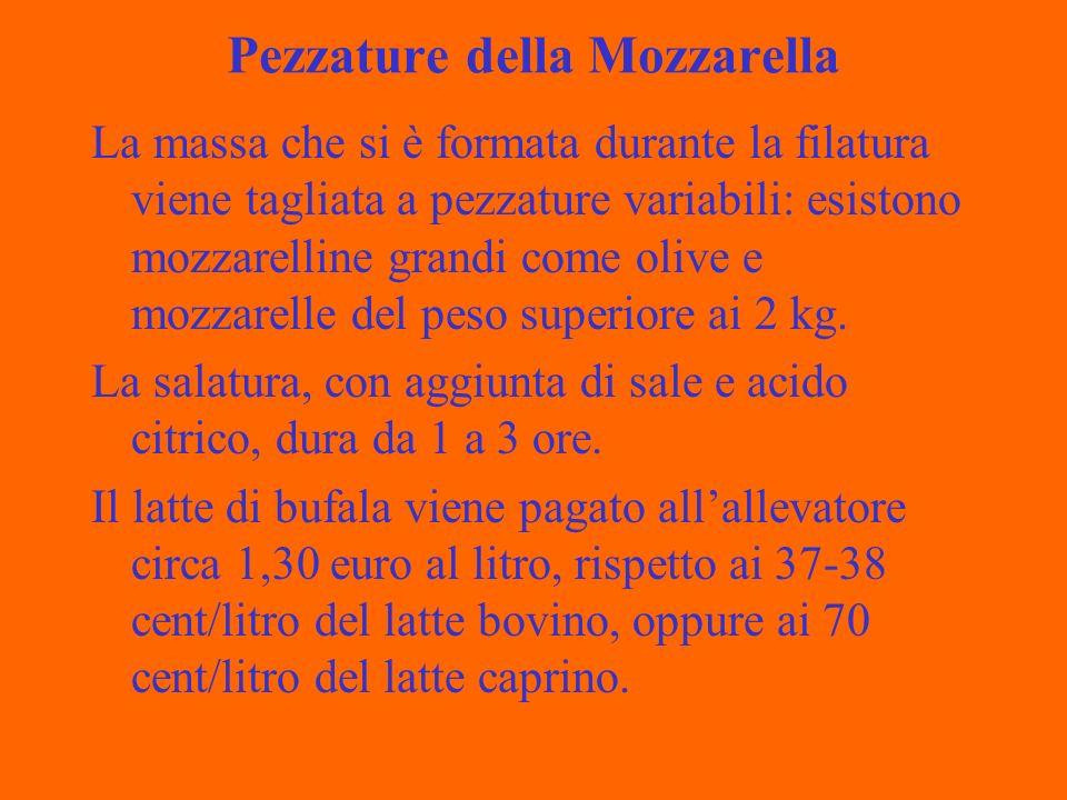 Pezzature della Mozzarella La massa che si è formata durante la filatura viene tagliata a pezzature variabili: esistono mozzarelline grandi come olive e mozzarelle del peso superiore ai 2 kg.