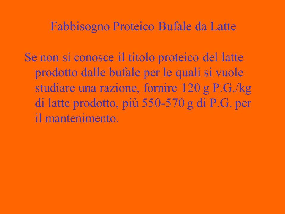 Se non si conosce il titolo proteico del latte prodotto dalle bufale per le quali si vuole studiare una razione, fornire 120 g P.G./kg di latte prodotto, più 550-570 g di P.G.