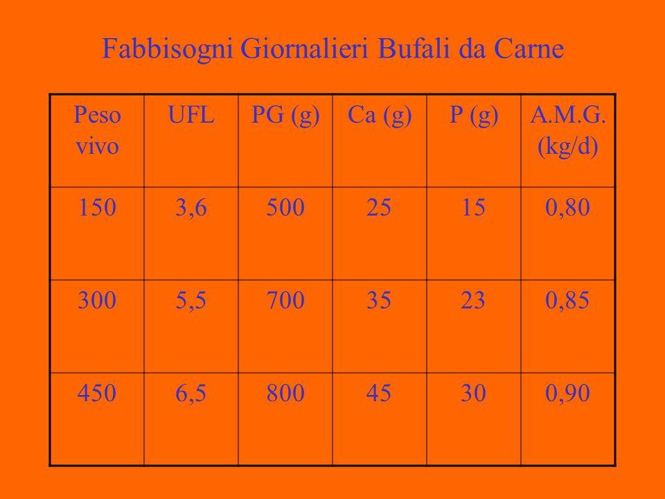 Fabbisogni Giornalieri Bufali da Carne Peso vivo UFLPG (g)Ca (g)P (g)A.M.G.