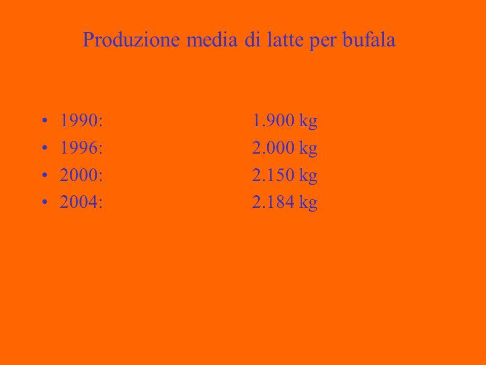 Produzione media di latte per bufala 1990: 1996: 2000: 2004: 1.900 kg 2.000 kg 2.150 kg 2.184 kg