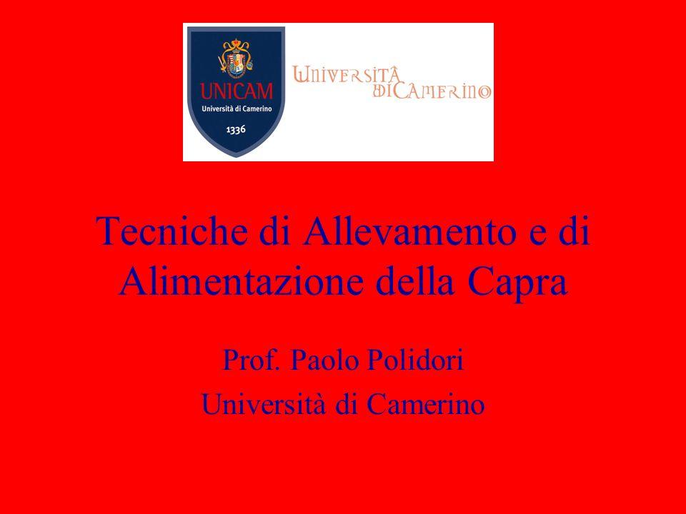 Tecniche di Allevamento e di Alimentazione della Capra Prof. Paolo Polidori Università di Camerino