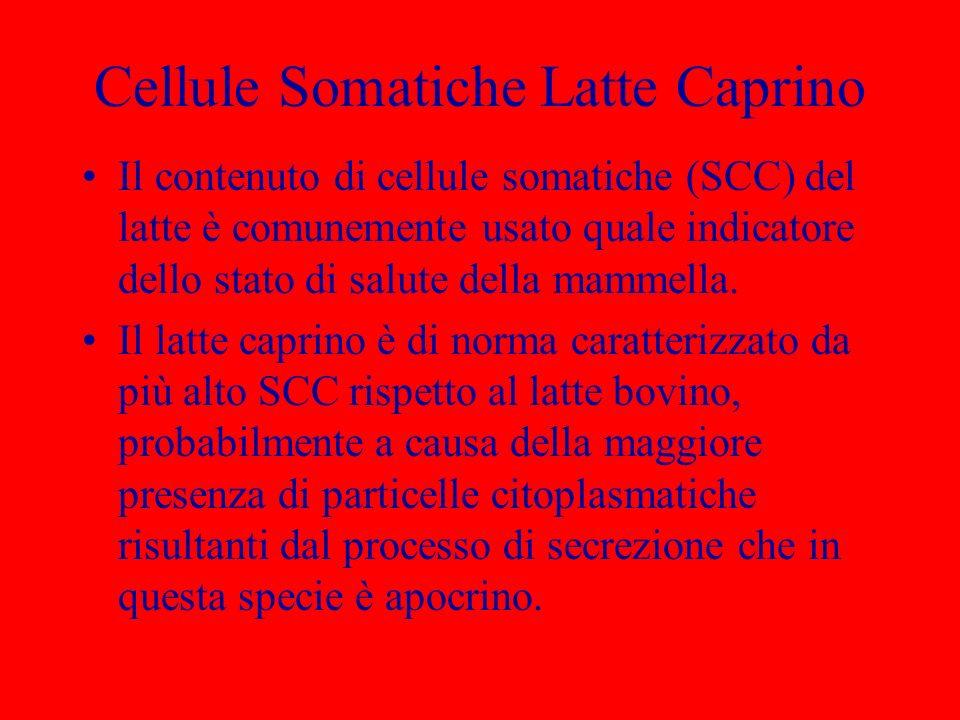Cellule Somatiche Latte Caprino Il contenuto di cellule somatiche (SCC) del latte è comunemente usato quale indicatore dello stato di salute della mam