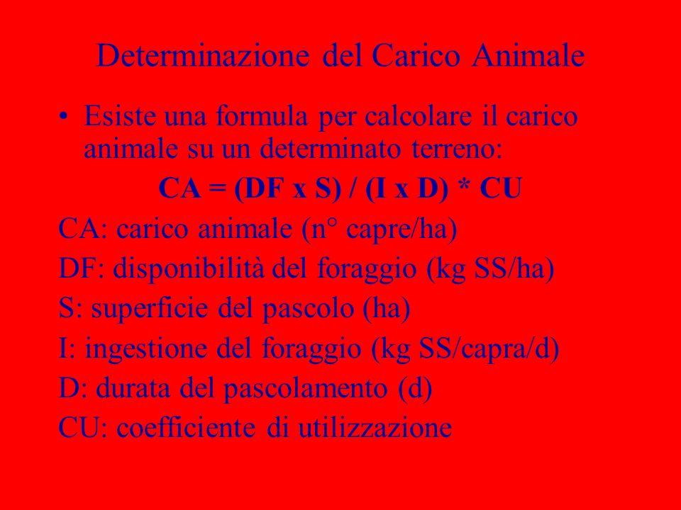 Determinazione del Carico Animale Esiste una formula per calcolare il carico animale su un determinato terreno: CA = (DF x S) / (I x D) * CU CA: caric