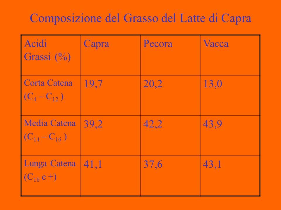 Composizione del Grasso del Latte di Capra Acidi Grassi (%) CapraPecoraVacca Corta Catena (C 4 – C 12 ) 19,720,213,0 Media Catena (C 14 – C 16 ) 39,242,243,9 Lunga Catena (C 18 e +) 41,137,643,1