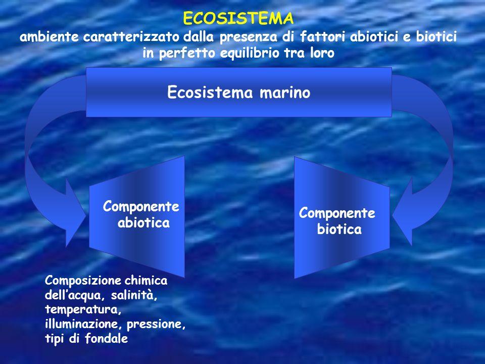 ECOSISTEMA ambiente caratterizzato dalla presenza di fattori abiotici e biotici in perfetto equilibrio tra loro Composizione chimica dellacqua, salini