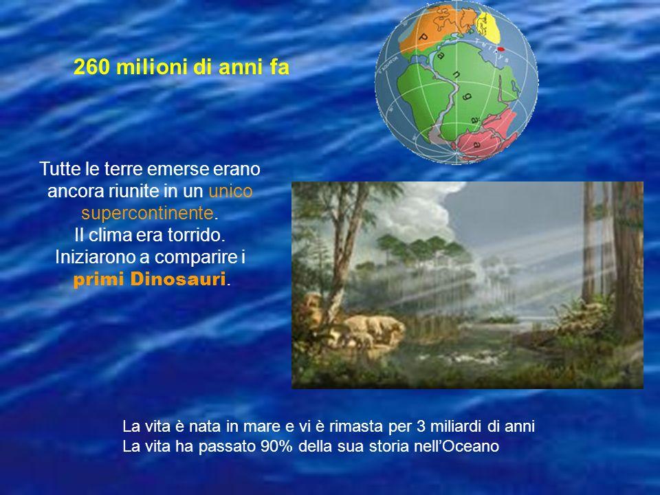 Tutte le terre emerse erano ancora riunite in un unico supercontinente. Il clima era torrido. Iniziarono a comparire i primi Dinosauri. 260 milioni di